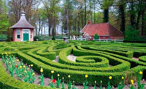 Садовый лабиринт может стать удачным украшением загородного участка