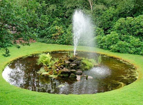 Водоем с фонтаном нуждается в постоянной очистке
