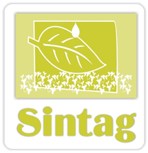 SINTAG 2015