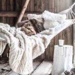 decorating for winter | @meccinteriors | design bites
