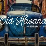 tuesday trending: sun-bleached hues and repurposed relics embrace old havana