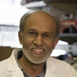 Dr Avindra Nath