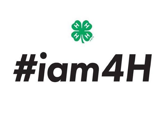 National 4-H Week: Show 4-H Pride With #iam4H Hashtag