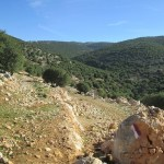 Hiking the Jordan Trail – Rasoun to Ajloun Castle