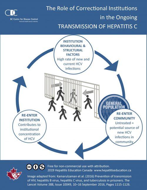 Hepatitis Education Canada   Programme canadien d'éducation sur l'hépatite