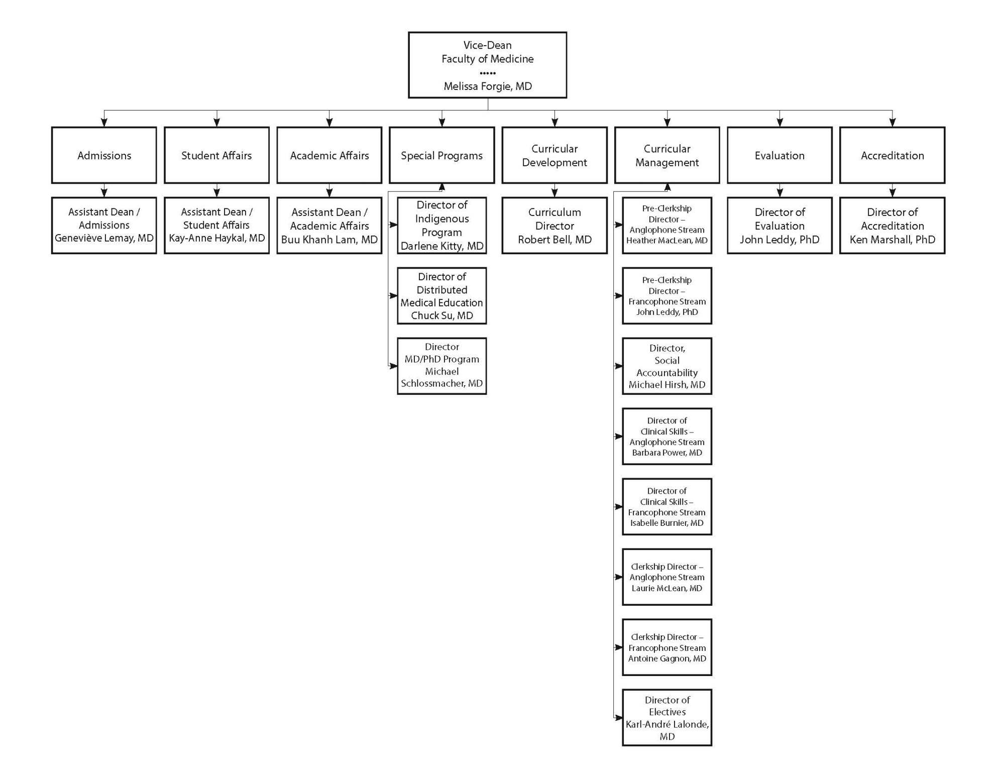 hight resolution of ugme program leadership org chart