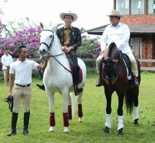 Presiden Joko Widodo (kiri) bersama Ketua Umum Partai Gerindra Prabowo Subianto (kanan) menunggang kuda disela-sela pertemuan di Padepokan Garuda Yaksa, Hambalang, Bogor, Senin (31/10). Pertemuan tersebut dalam rangka silaturahmi sekaligus membahas masalah bangsa, politik dan ekonomi. MTD/Biro Pers Setpres