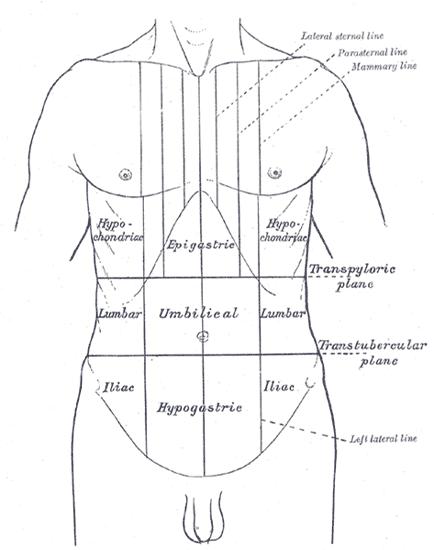 swelling-in-hypogastrium
