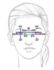 Orbitofacial assessment of Indian Americans and its