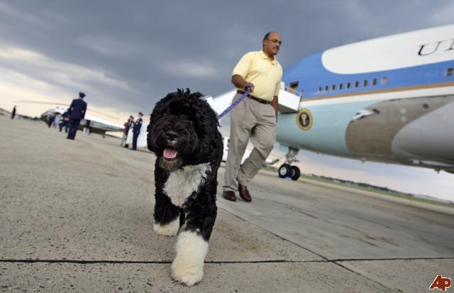 bo-obama-2009-8-31-12-10-17