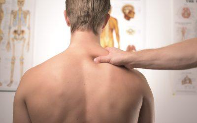 Pectoral Girdle, Shoulder, Arm & Elbow
