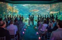 Florida Aquarium Reception Venues - Tampa Fl