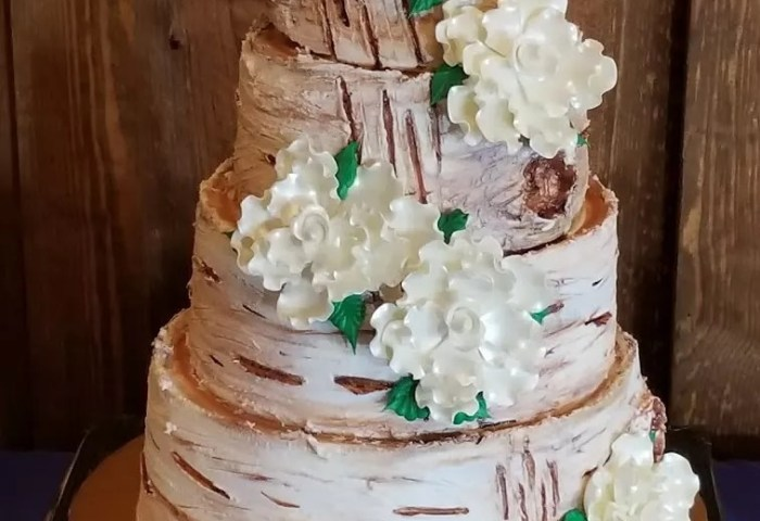 Fancy Cakes And Confections Wedding Cakes Norman Ok