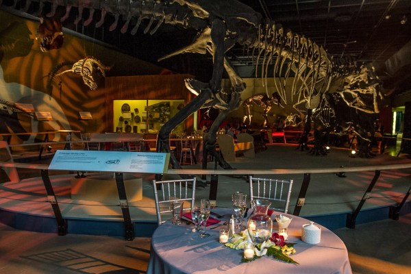 Cleveland Museum Of Natural History Reception Venues