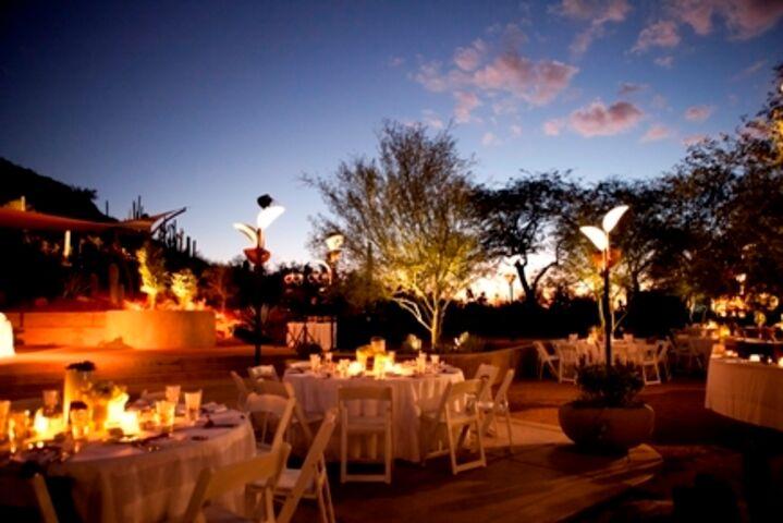 Desert Botanical Garden  Phoenix AZ