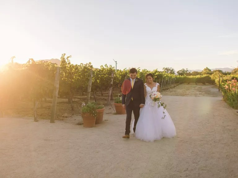 How to Have a Vineyard Wedding