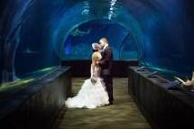 Jenks Aquarium Tulsa OK