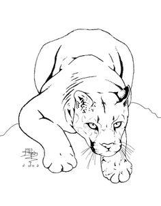 mtn lion, cougar, bobcat by kimberlyestep10 on Pinterest