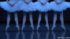 dance from Swan Lake.  You can't have a dance board without this