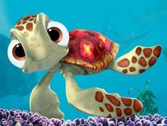 Google Image Result for http://images.wikia.com/glee/images/4/40/Finding-nemo-squirt.jpg