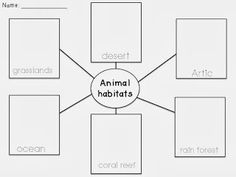 animal worksheet: NEW 572 ANIMAL HOMES WORKSHEET GRADE 2