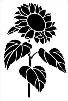 Graphics Black Amp White On Pinterest Dover Publications