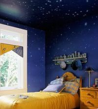 Star Ceiling on Pinterest