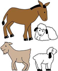 ccd farm animal