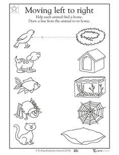 animal worksheet: NEW 817 ANIMAL HOMES WORKSHEET FOR