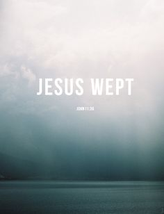 it's easy to breeze by ~ Jesus wept. Jesus was human. Jesus had feelings. Jesus relates to us more than we understand. I love this verse in its simplicity and its complexity.