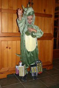 Kids Halloween Costume Ideas on Pinterest | Parrot Costume ...