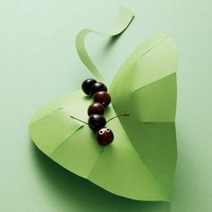 Cherry Hungry Caterpillar