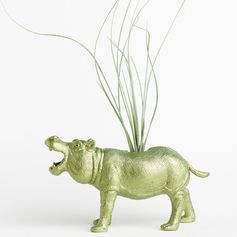 Air Plant Hippo Planter Room Decor, College Dorm Ornament. Easy. Perfection.