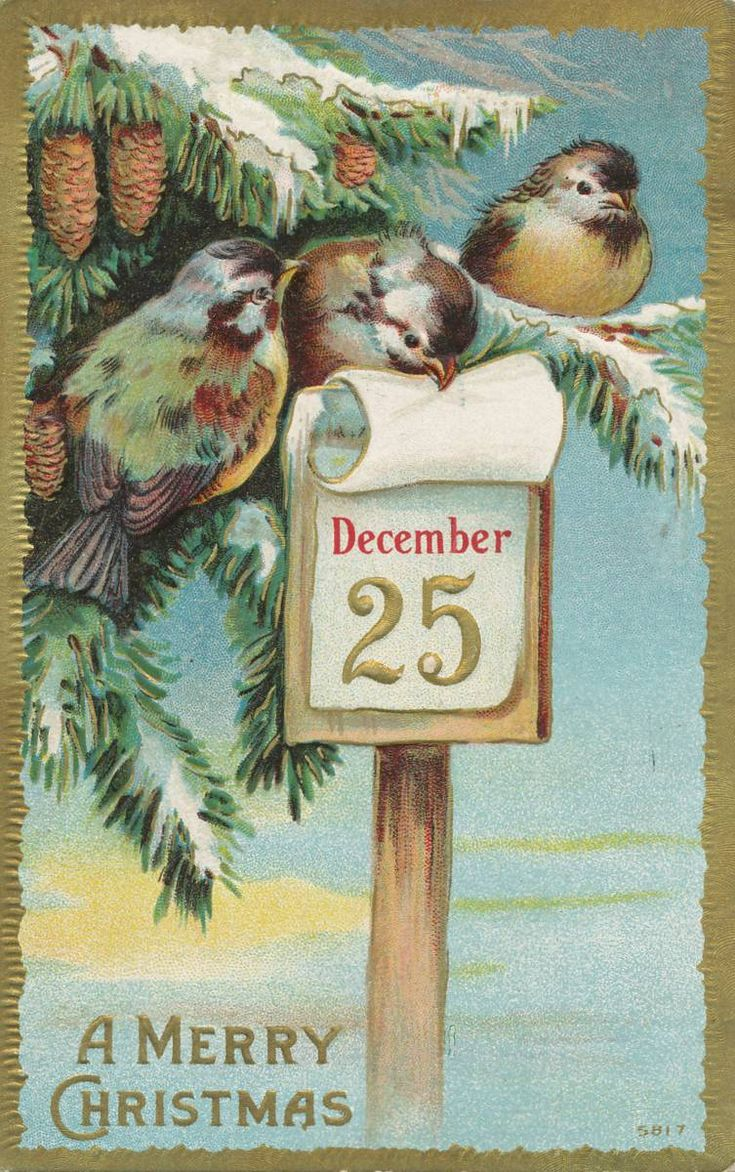 Victorian Chrostmas postcard with sweet birds, circa 1900. From Wikipedia Commons by way of Tidbits Trinkets Images.