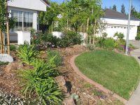 Full Yard Landscape   Low Maintenance Yards I like   Pinterest
