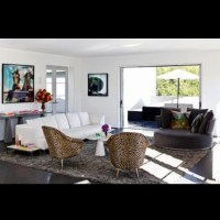 Leopard Living Room Decor