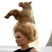 horse hair style ; styles