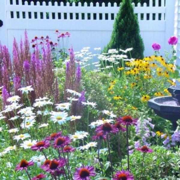 butterfly garden gardening ideas
