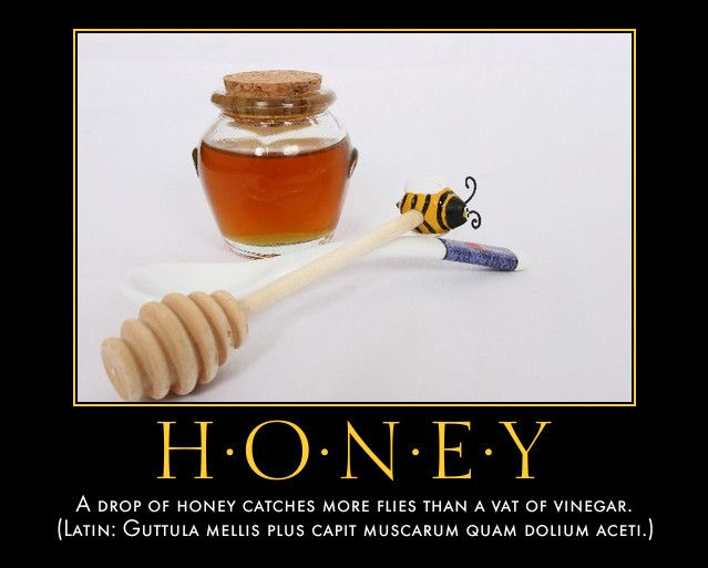Image result for catch more flies with honey than vinegar