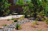 Small Backyard Desert Landscaping Ideas | Eanavevai - Home ...