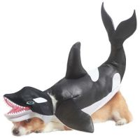 That's one whale of a corgi! LOL :) Our Orca Costume for ...
