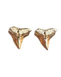 Large Shark Teeth Stud Earrings | Style | Pinterest