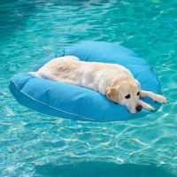 Pool Dog Float and Bed | Funnies | Pinterest