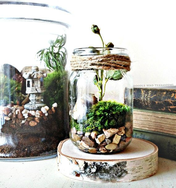 Moss Terrarium Kit / Mason Jar Kit / Terrarium Gift Set / DIY Starter Kit / How to Build a Terrarium
