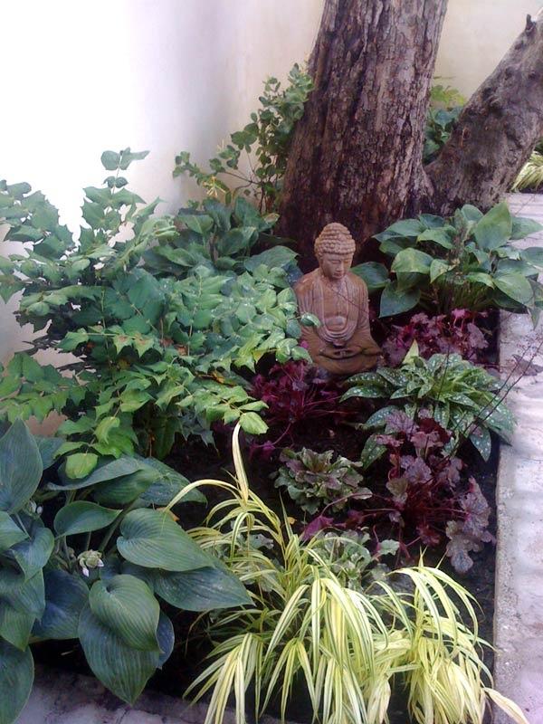 Small Shade Garden Ideas Photograph  Found on gracefulgarde