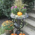 Fall planters at different heights love the pumpkins happy fall
