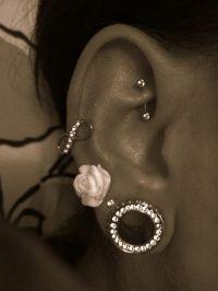 ear piercings, earrings, jewelry, gauges   P i E R C E D ...