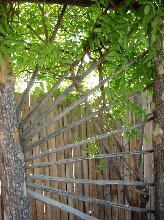Rustic Garden Arbor Ideas Photograph  Rustic ArborTrellis
