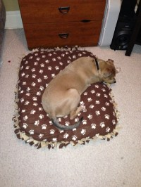 No-Sew Dog Bed Cover! | crafts | Pinterest