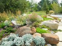 rock garden   Mediterranean Gardens   Pinterest